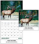 Wildlife Portraits Spiral Wall Calendars